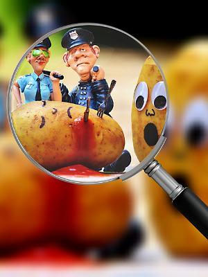 Kartoffel diät buch
